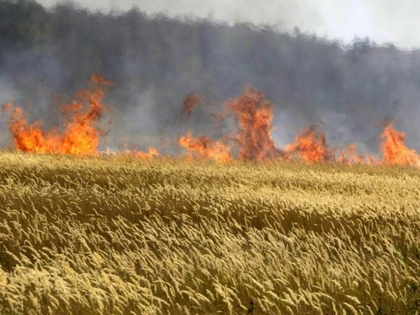 Берегите хлеб от пожара!