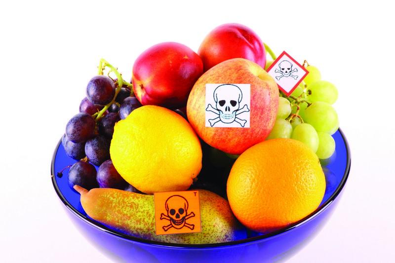 Действие токсичных элементов на организм человека