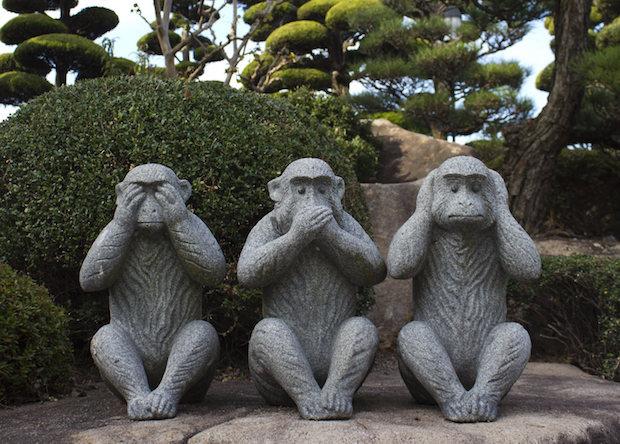 Ученые опровергли анатомическую неспособность обезьян к речи