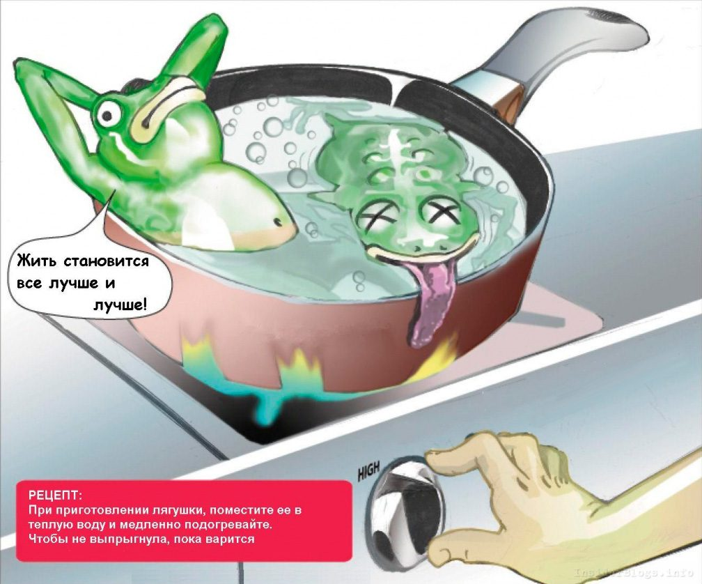 Синдром «лягушки в кипятке»: порочный круг, который истощает нас
