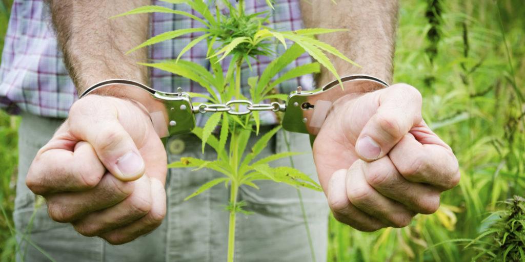 Наркотик – враг не только человека, но и общества