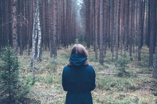 Вы заблудились в лесу