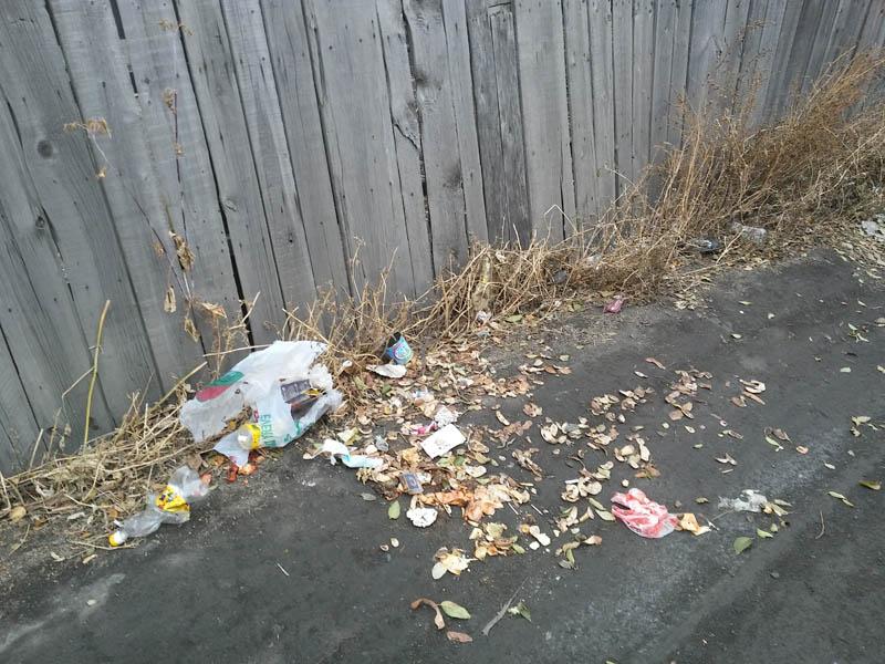 Не там чисто, где убирают, а там, где не мусорят…