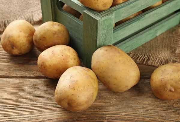Способы хранение картофеля в зимнее время