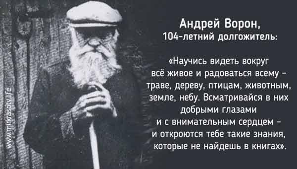 Заповеди старца для долгой и счастливой жизни